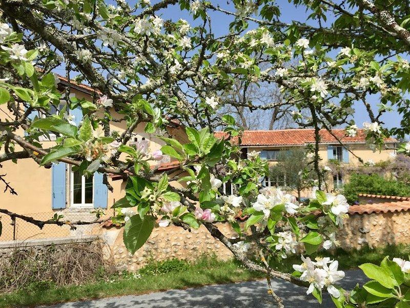 Una vista de Le Pommier Gites desde nuestro huerto en primavera.