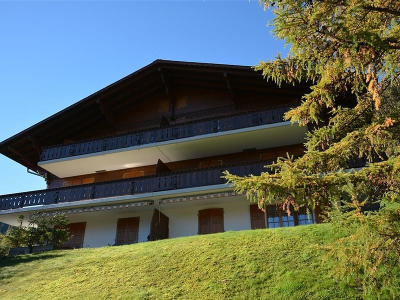 Hornflue (Wohlwender), vacation rental in Chateau-d'Oex