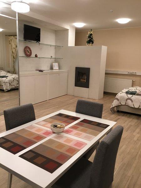 Vanalinna Apartment, holiday rental in Tallinn