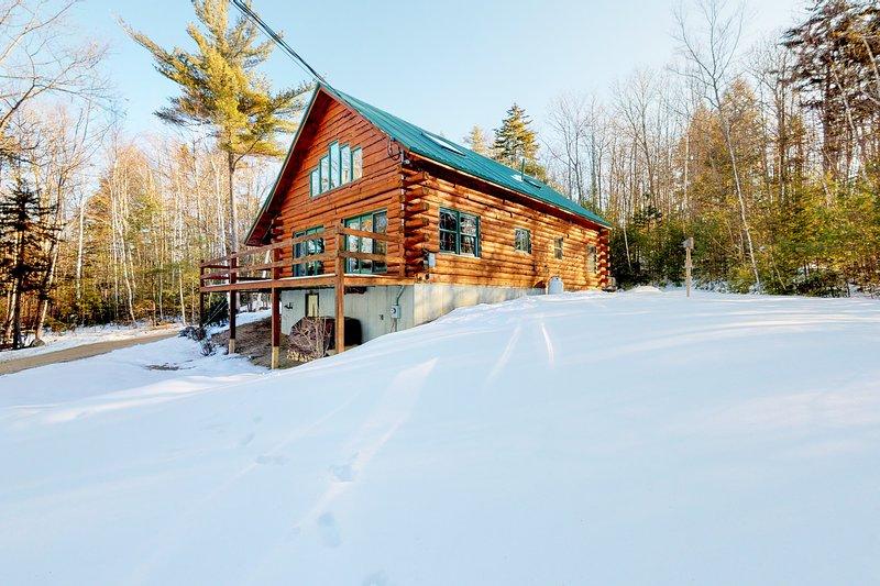 Cozy & modern log cabin w/ free WiFi, a wood-burning fireplace, & mountain views, location de vacances à Silver Lake