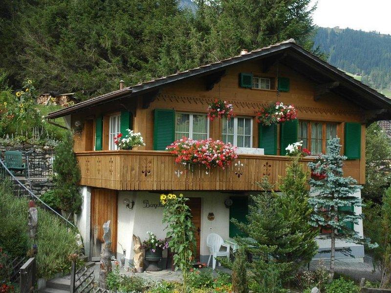 Bärgchutzli Parterre, vacation rental in Achsete
