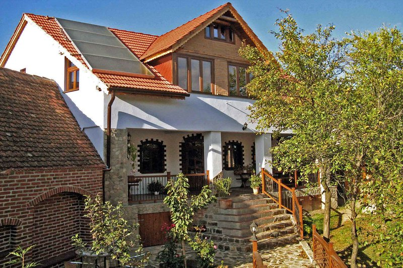 • Casa Crina • our jewel for high demands • vacation villa Romania Transylvania, vacation rental in Central Romania