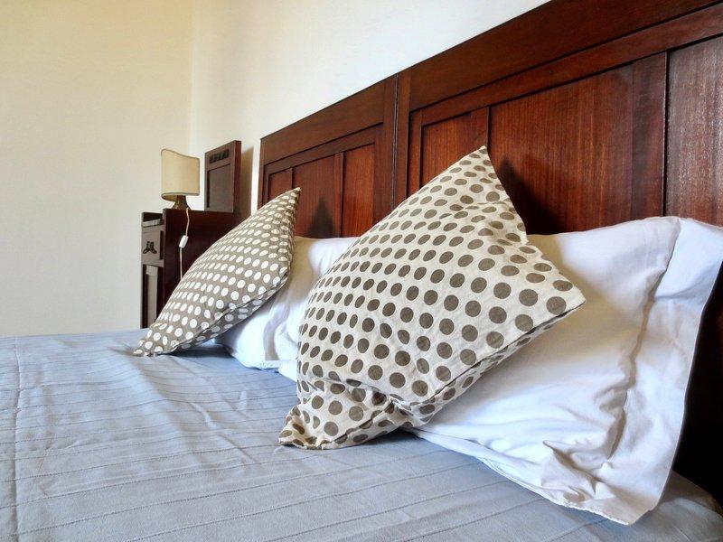 Villa Anna elegante dimora dei primi del novecento, holiday rental in Torre del Lago Puccini