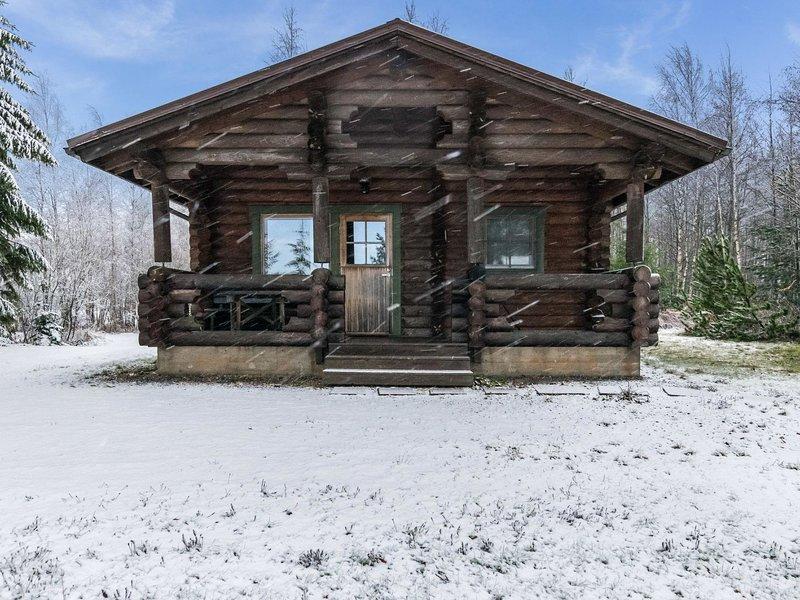 Kurjenmiekka, aluguéis de temporada em Padasjoki
