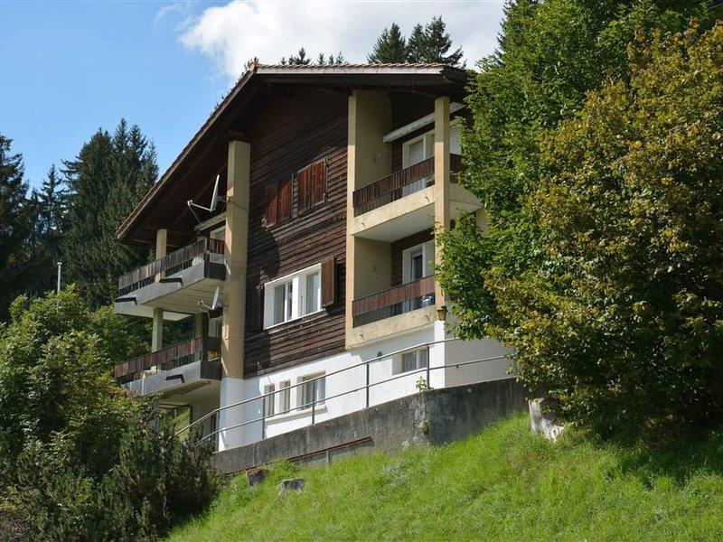 Media, vacation rental in Saanenmoser
