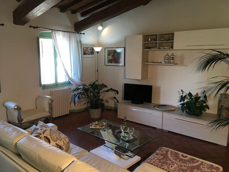Appartamento il glicine  nel centro storico, vacation rental in Pistoia