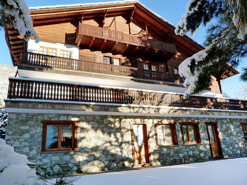 Aigle, vacation rental in Etroubles