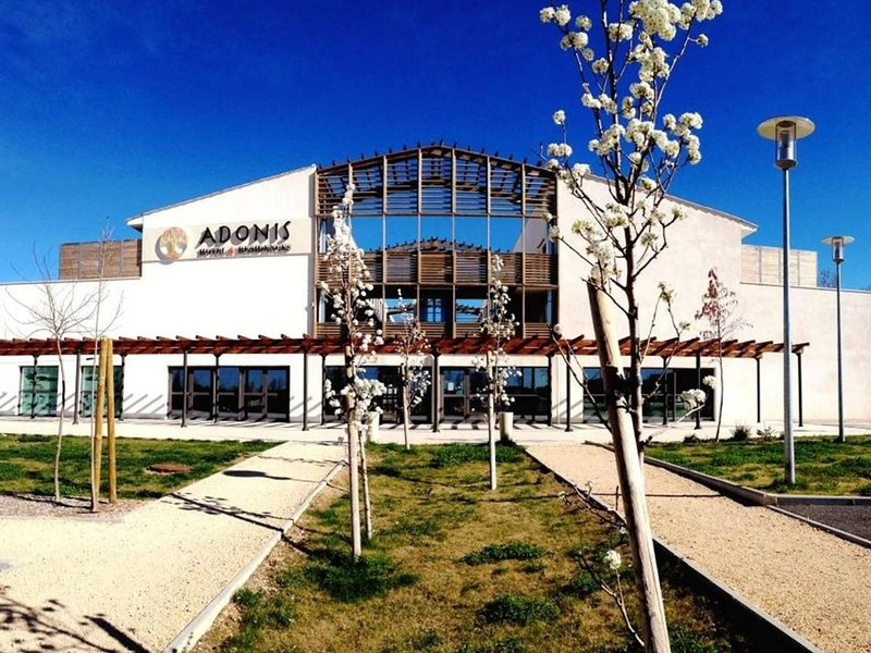 Adonis Aix en Provence, holiday rental in Eguilles