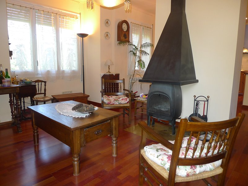 Olot, vacation rental in Sales De Llierca