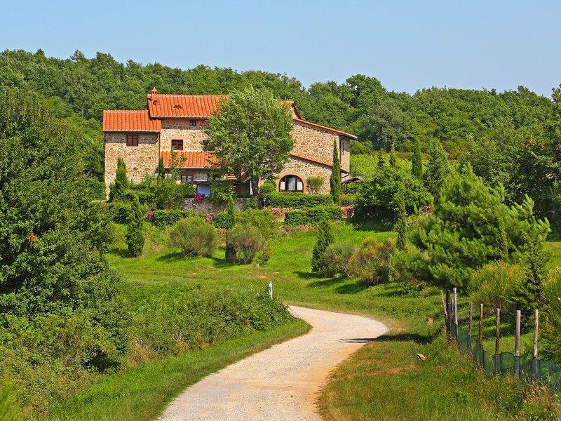 La Massa, vacation rental in Montevarchi