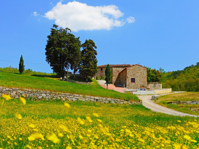 Locazione turistica Selvapiana, casa vacanza a La Panca