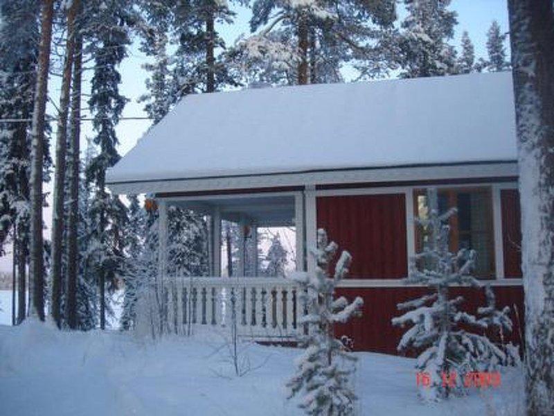 Kaukosaaren ahonlaita, holiday rental in Vallioniemi