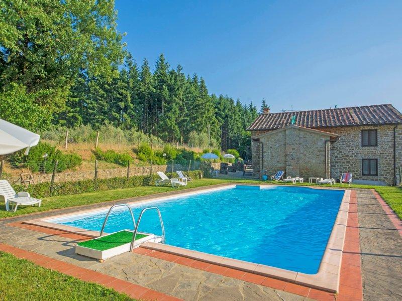 Certina 1, holiday rental in Montemignaio