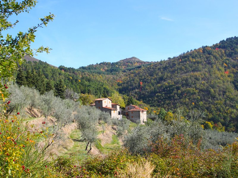 Quercia, vacation rental in Cancelli