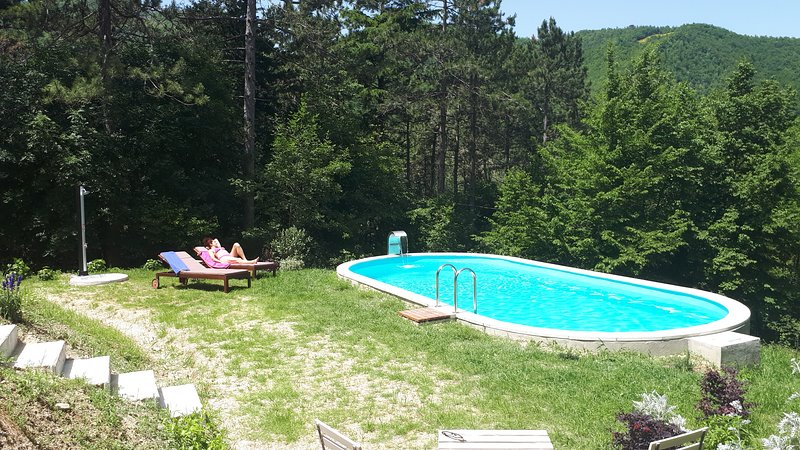 Apartment with swimming-pool, vacation rental in Casola Valsenio