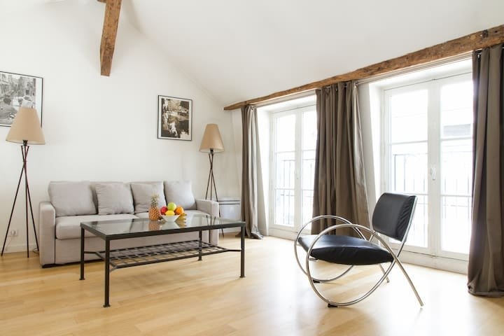 1022. LOVELY 1BR IN THE CENTER OF SAINT GERMAIN DES PRES, holiday rental in Paris