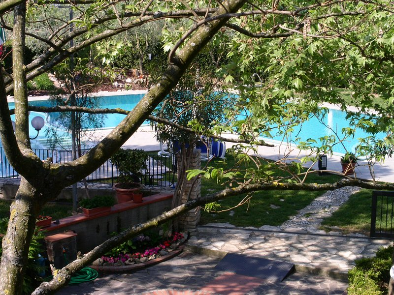 BEGONIA, holiday rental in Lavoria