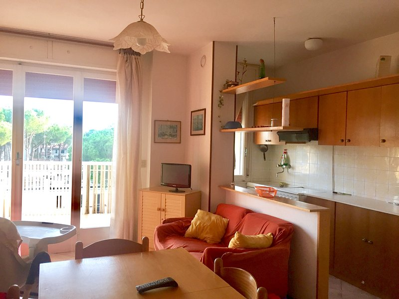 Beautiful apartment with sea view, vacation rental in Lido di Spina