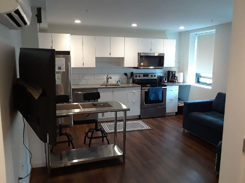 Sunset 506 GreenLine   1BR 1BA   Walk to Boston Children's and the GreenLine Tro, vacation rental in Boston