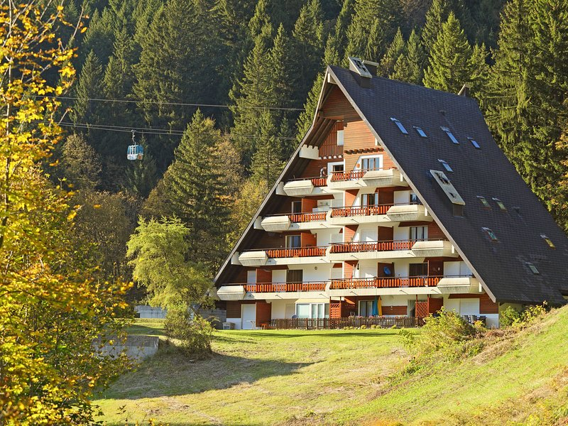 Anémone, location de vacances à Alpe des Chaux
