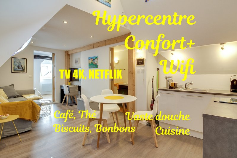 Au Petit Pont d'Oloron **confort & authenticité**, holiday rental in Oloron-Sainte-Marie