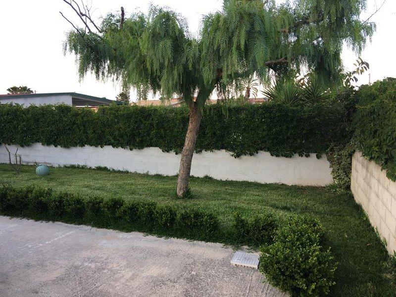 Ces espaces verts vous permettent de vous détendre et de créer une atmosphère relaxante dans votre maison.