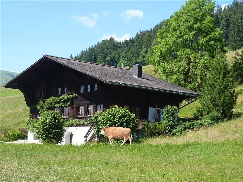 Aerneli, Chalet, aluguéis de temporada em Gstaad