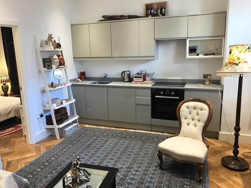 Cosy and warm one bedroom flat in Chiswick, lovely street, vacation rental in Hounslow
