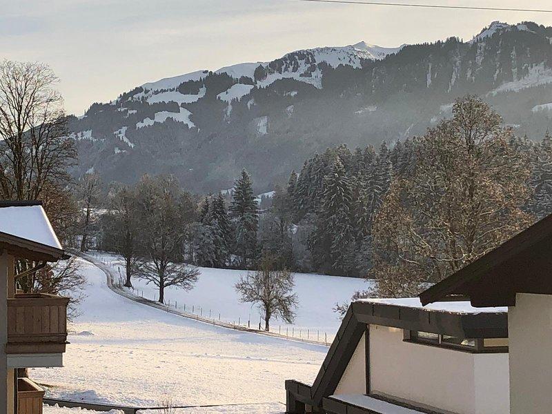 Cosy Lodge Oberndorf by Home2be Kitzbühel, vacation rental in Kitzbuhel