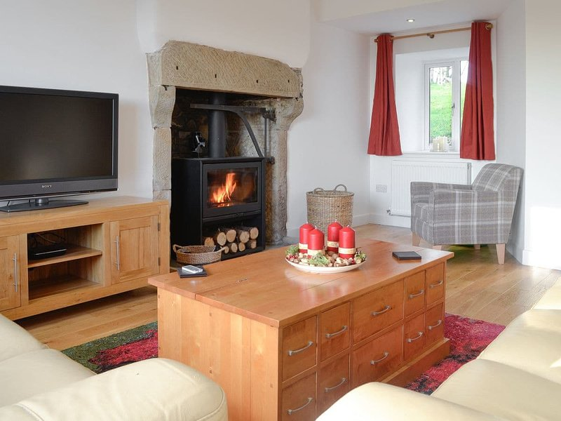 Cosy living room with woodburner