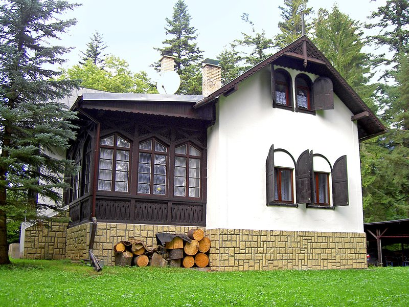 Tatranska Kotlina, holiday rental in Vysne Ruzbachy