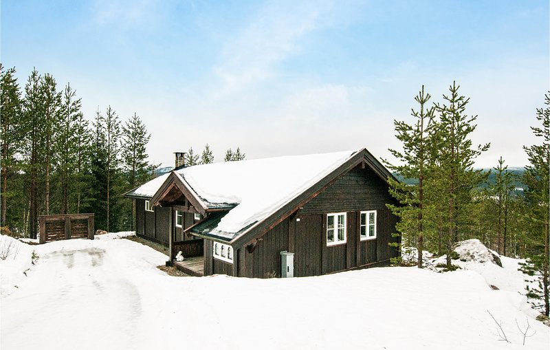 Trysil accommodation chalets for rent in Trysil apartments to rent in Trysil holiday homes to rent in Trysil