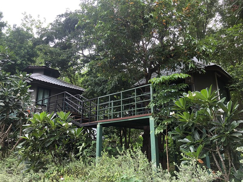Tree house in the wood of Jung Ja hut, Ferienwohnung in Kanchanaburi