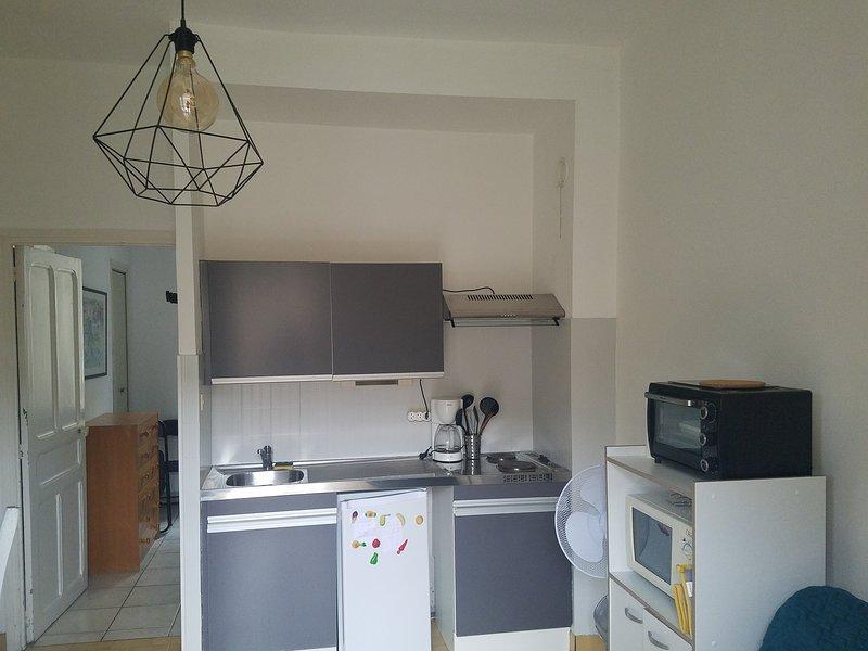 Appartement cure ou vacances avec WIFI et parking et à 100m des thermes, location de vacances à Corsavy
