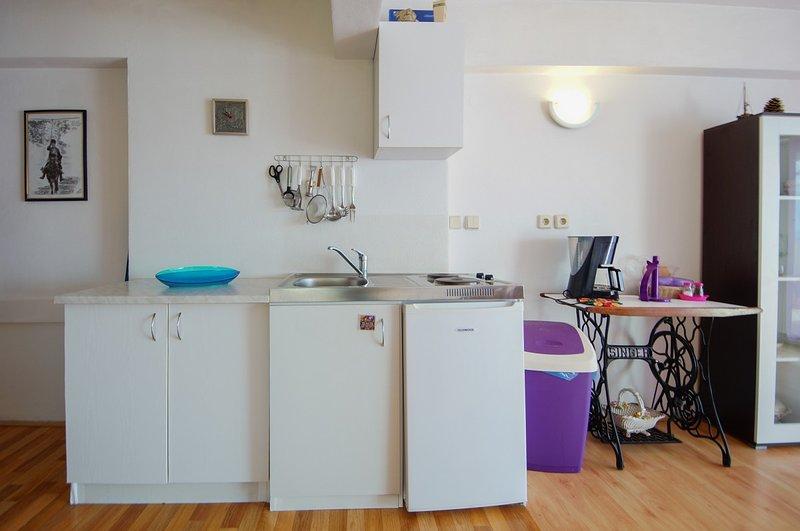 Holiday home 101052 - Holiday apartment 3010, holiday rental in Sibinj Krmpotski