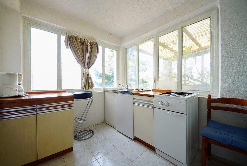 Holiday home 101052 - Holiday apartment 3009, holiday rental in Sibinj Krmpotski