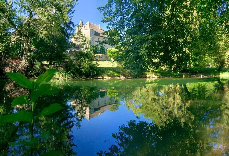 Scey-Maisieres Chateau Sleeps 25 - 5828598, holiday rental in Trepot
