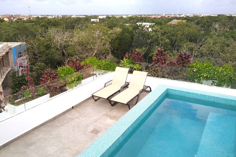 Private Roof w Plunge Pool, Brand New 2 Br Penthouse for 6 sleeps, alquiler de vacaciones en Tulum Beach
