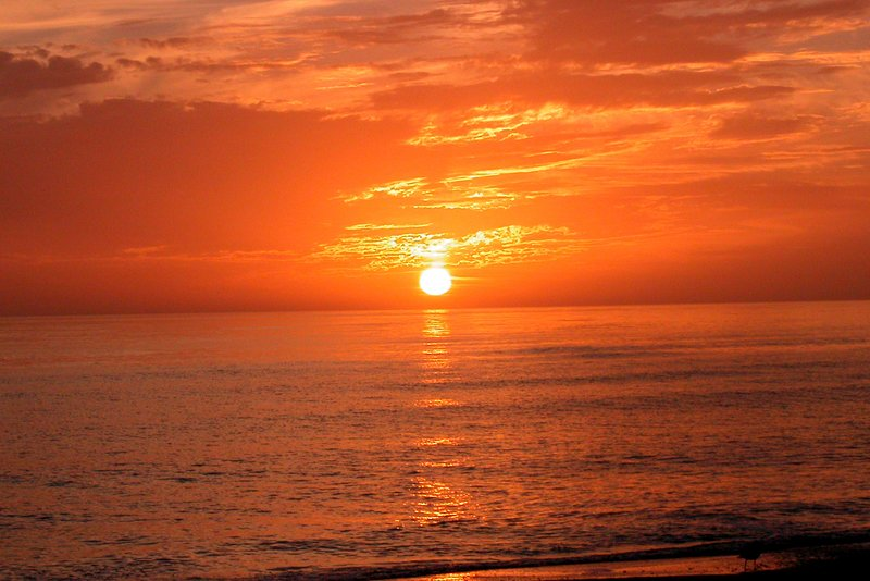 Incomparable Siesta Key Sunsets