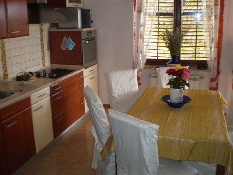 Holiday home 173505 - Holiday home for sole use 187758, holiday rental in Petrovija