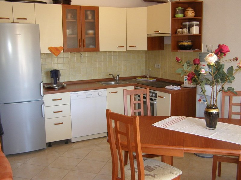 Holiday home 114882 - Holiday apartment 16932, vacation rental in Vrsine