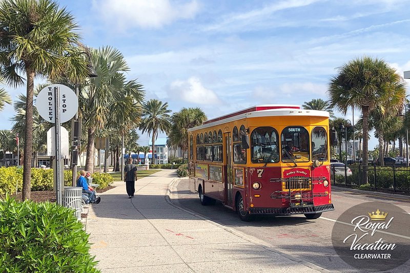 Clearwater Jolley Trolley, a fun and unique way to see Clearwater Beach
