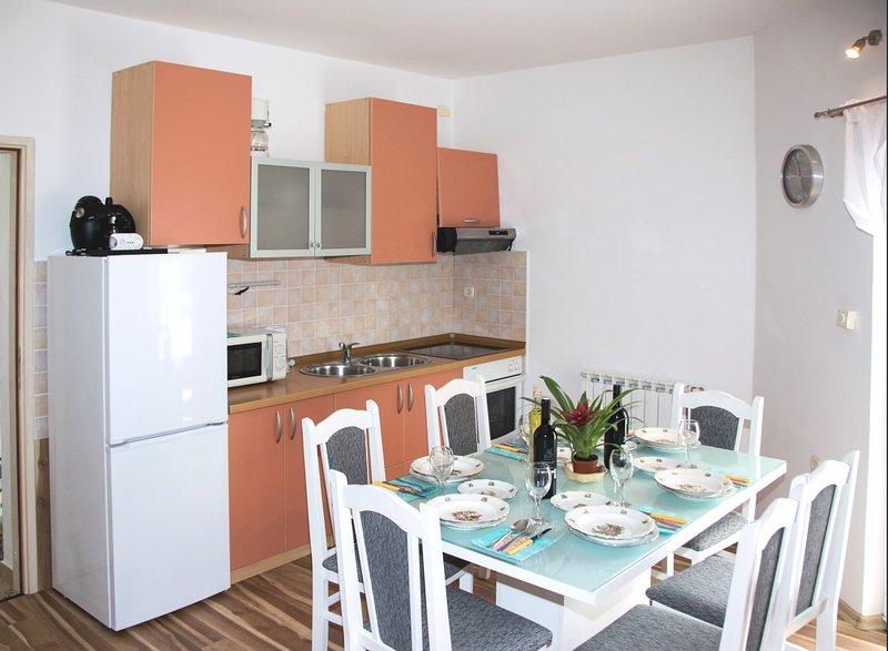 Holiday home 154834 - Holiday apartment 146672, holiday rental in Krapanj