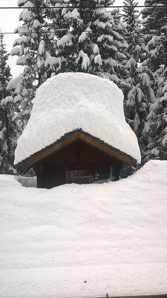 Snow on hut near Murren
