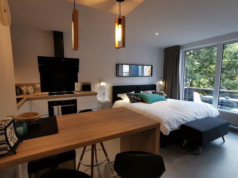Le Studio de l' Avenue, holiday rental in Spa