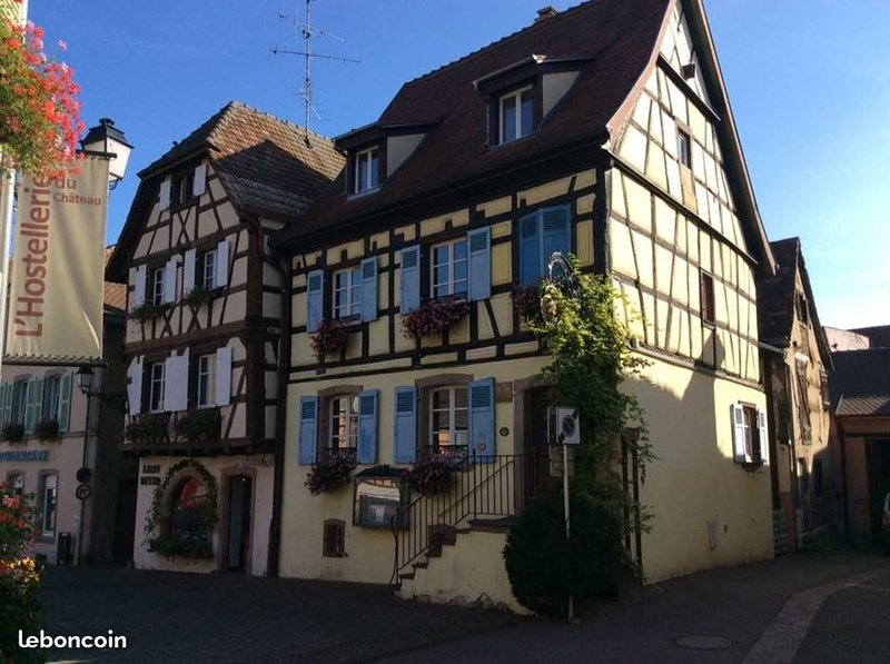 Beautiful apt with terrace & Wifi, holiday rental in Eguisheim