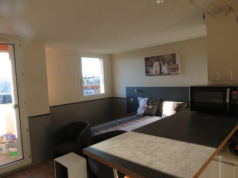 Nice studio with balcony & Wifi, holiday rental in Verfeil