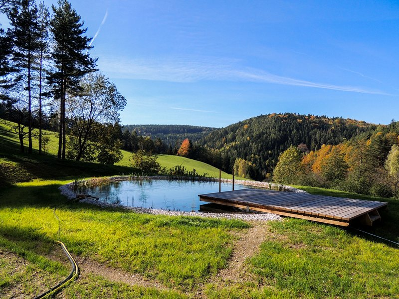 Feichtinger, vacation rental in Lower Austria