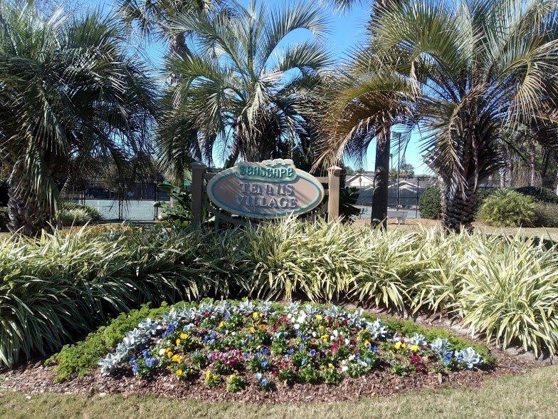 Outdoors,Garden,Arbour,Grass,Palm Tree