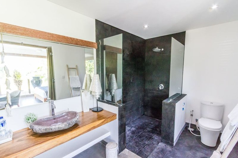Spacious shower with all amenities